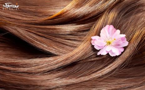 رنگ مو تا سرشانه در آرایشگاه باران