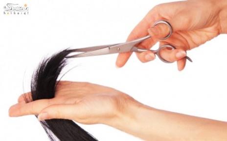 کوتاهی مو در آرایشگاه الماس بنفش