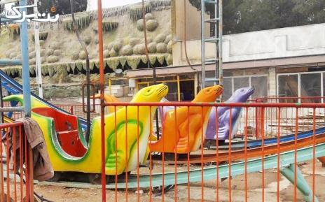 لحظاتی شاد در شهربازی پارک جنگلی پیشوا برای کودکان