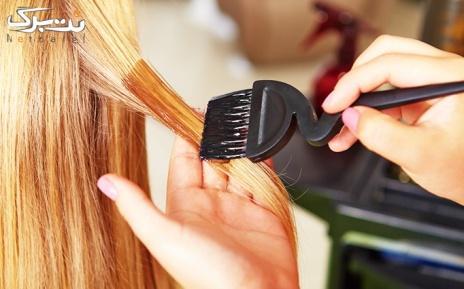پکیج 2 : مش فویلی مو در آرایشگاه آلاچیق