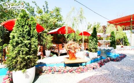 پکیج 2 : رستوران زیتون با منو غذاهای ایرانی