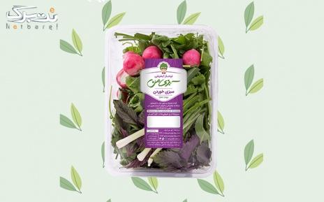 پکیج 1: خرید پکیج پیشنهادی از فروشگاه سبزی من