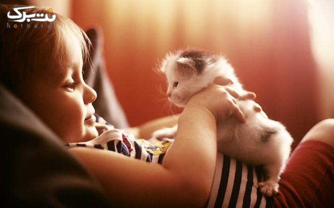 سلامت حبوانات خانگی دردرمانگاه دامپزشکی فردیس