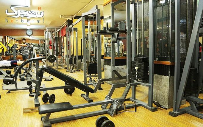 کار با دستگاه های ورزشی در باشگاه زاگرس