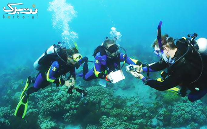 آموزش و تفریح غواصی  ساحل