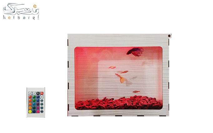 آکواریوم با نورپردازی + کنترل + پک ماهی از ماهیلو