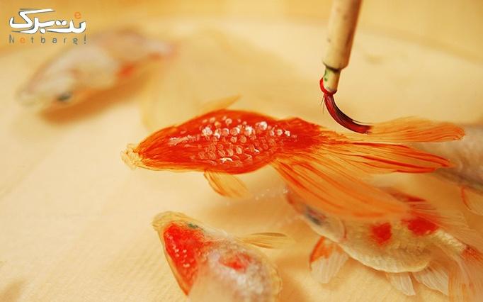 کارگاه ساخت ماهی ۳ بعدی رزین در موسسه ویژگان