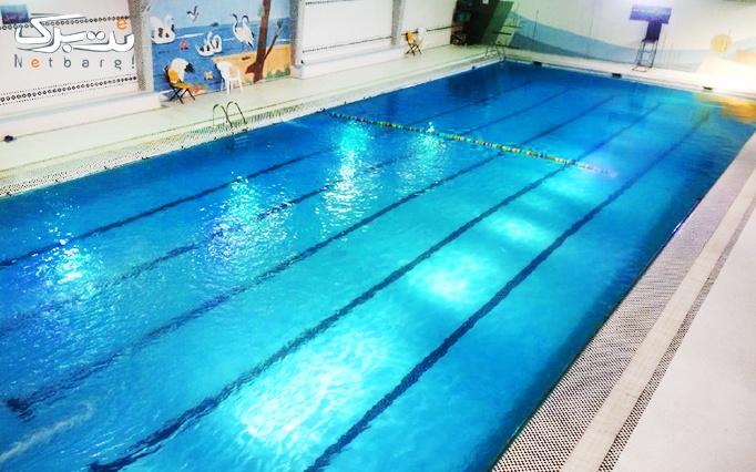 لحظاتی شاد و مفرح با شنا در استخر نجفی