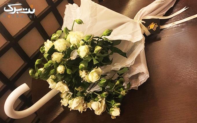 ديزاين چترى و رز مينياتورى درجه یک گالری گل رزشید