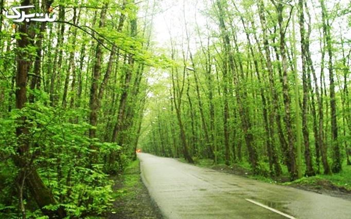 تور نوروزی یک روزه جنگل و ساحل گیسوم