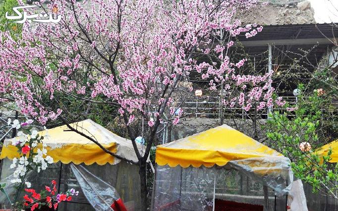 باغ رستوران زاگرس با منو غذایی و سرویس چای سنتی