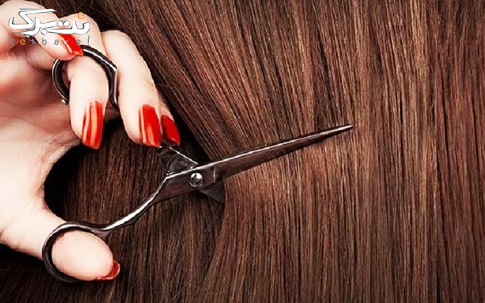 کوتاهی مو در آرایشگاه تندیسه