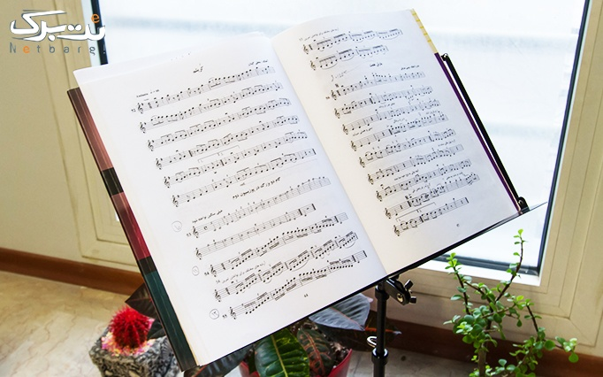 آموزش ساز و آواز ایرانی و کلاسیک در آموزشگاه سیاوش