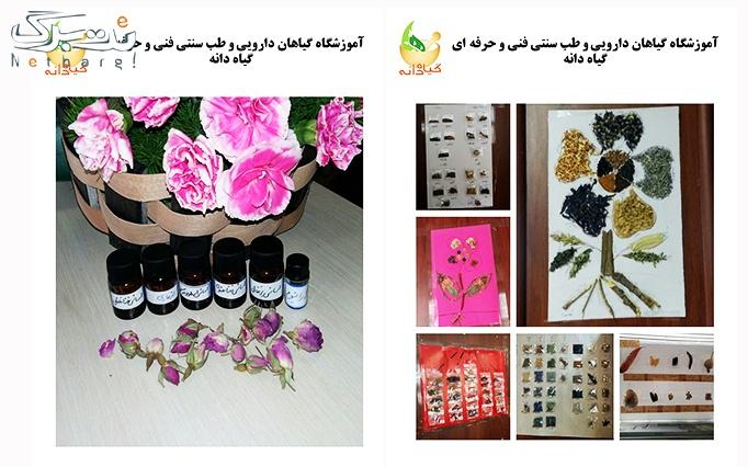 جشنواره تابستان گیاهان دارویی درآموزشگاه گیاه دانه