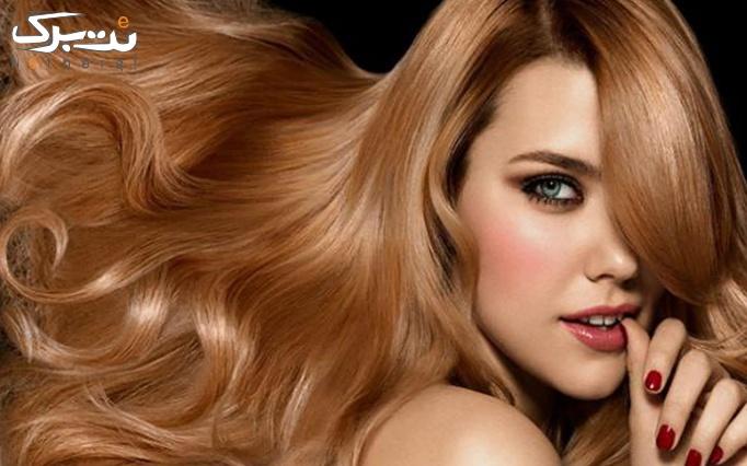 پاکسازی پوست یا ویتامینه مو در آرایشگاه عروس پردیس