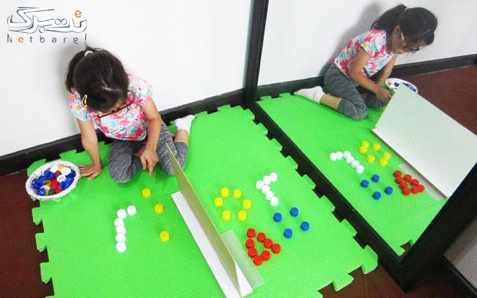 کارگاه آگاهی خانواده ها در هوش حرکتی