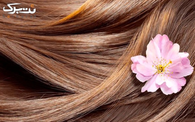 رنگ مو و مش فویلی در سالن زیبایی پیرایه ها