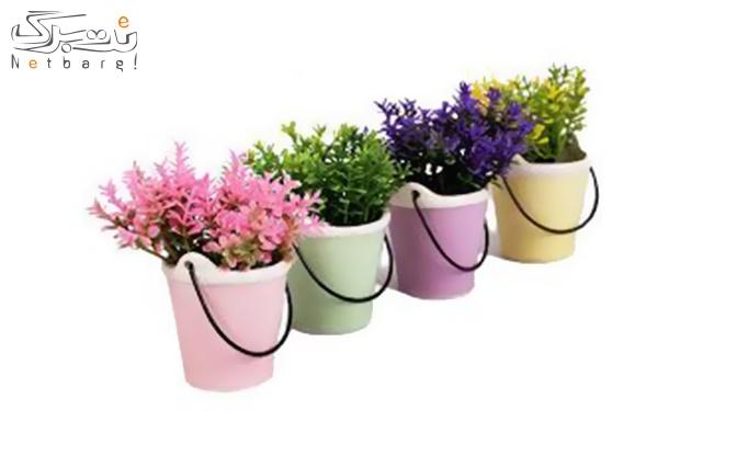 گلدان سطلی فانتزی 4 تایی