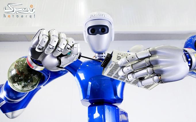موسسه آریا تهران با آموزش رباتیک