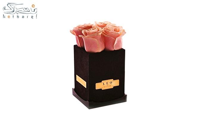 ویژه روز دختر :جعبه گل رز هلندی کد  LA104