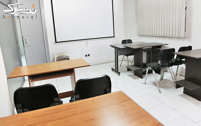 کارگاه تخصصی وب کاربران پول ساز در موسسه مانی