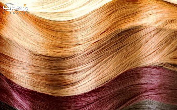 رنگ مو در آرایشگاه تندیسه