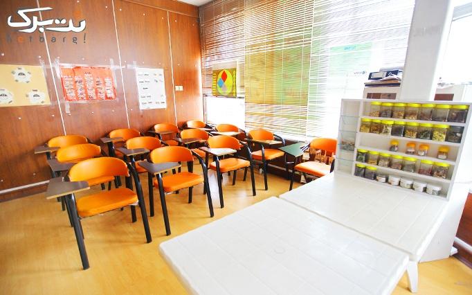 کارگاه آروماتراپی در آموزشگاه گیاه دانه