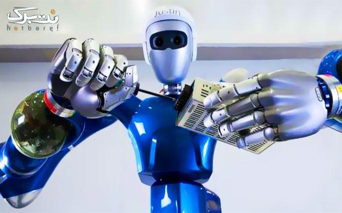 کارگاه آموزشی رباتیک مقطع سنی 8 الی 14 سال