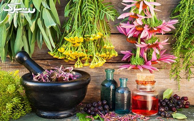 کارگاه آموزش گیاهان دارویی در گیاه دانه