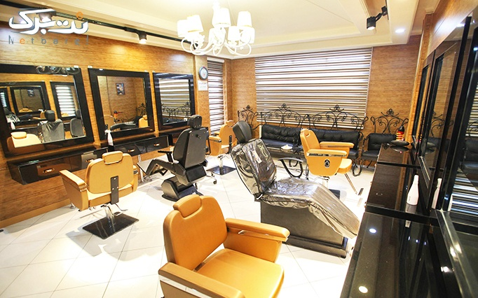 انواع رنگ مو و هایلایت شاخه ای در آرایشگاه باران