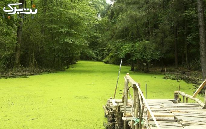 تور یک روزه مرداب سراوان بهشت سبز گیلان