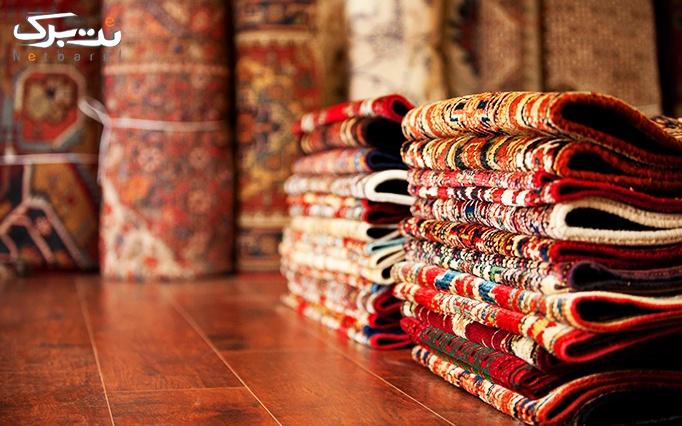 شستشوی فرش در قالیشویی شاهکار