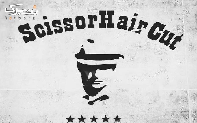اصلاح و فرم دهی موی سر در پیرایش سیزر(ویژه آقایان)