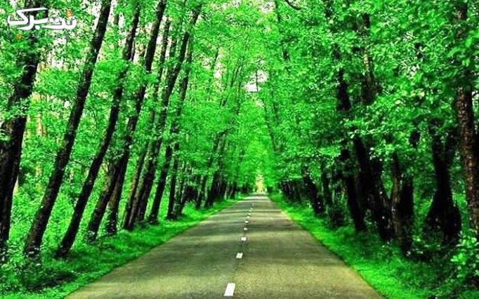 تور یک روزه جنگل و ساحل گیسوم VIP
