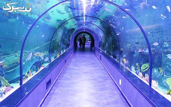تونل آکواریوم انزلی