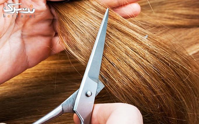 کوتاهی مو ژرنالی در آرایشگاه روشنک