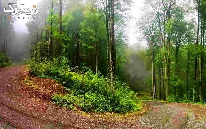 تور ییلاقی فلکده و جنگلهای دو و سه هزار 2 روزه