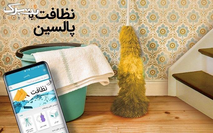 نظافت در اپلیکیشن و سایت پالسین