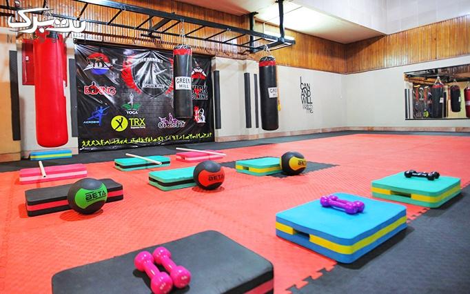 ورزشهای رزمی و بدنسازی در باشگاه همت