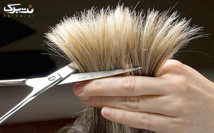 کوتاهی مو در سالن زیبایی آنسه