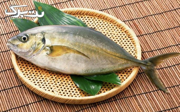 فروش انواع جدید ماهی و میگو صید روز