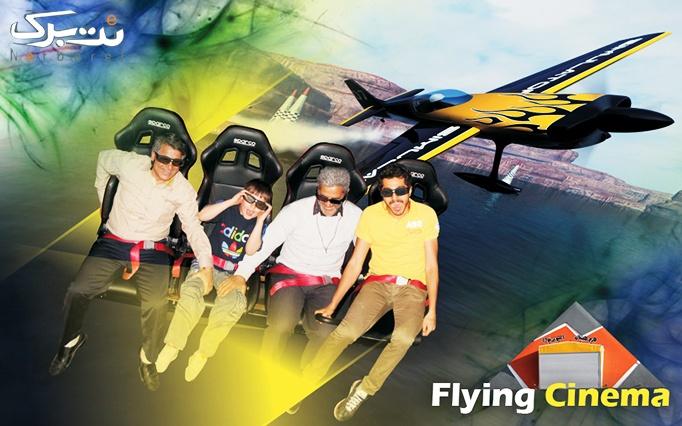 اسکیت ، پیست پرواز، هرم هیجان و سافاری