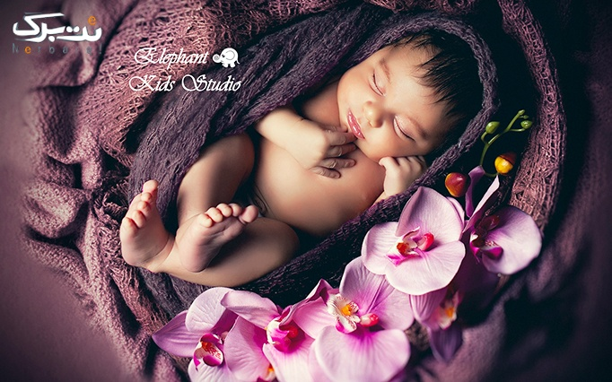 آتلیه الفنت با عکس های تخصصی کودک، نوزاد و بارداری