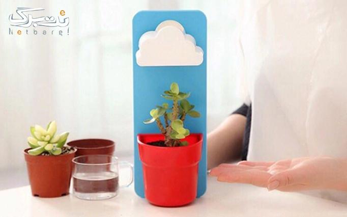 گلدان آبپاش دار از فروشگاه آروگو 2