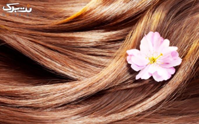 رنگ مو در آرایشگاه آسمان زیبا