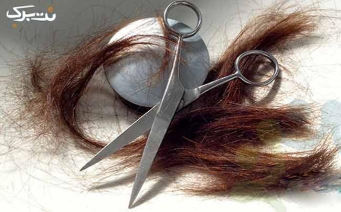 کوپ مو در سالن زیبایی آپامه