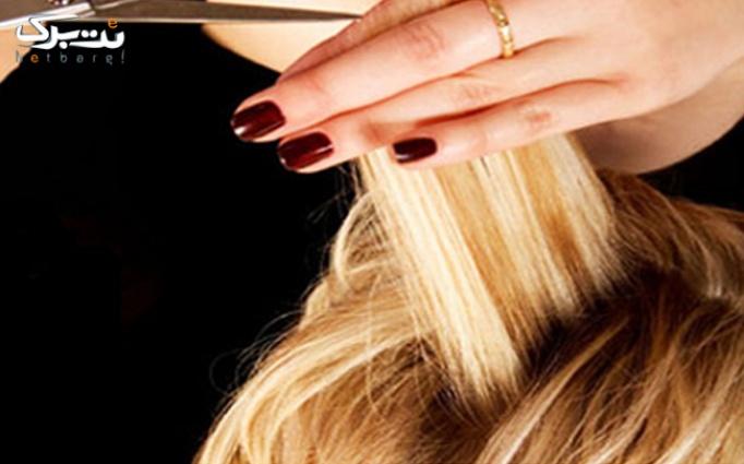 ترمیم ناخن و کوتاهی مو درآرایشگاه ساقه طلایی