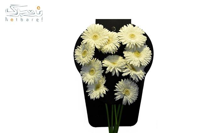 یک دسته گل طبیعی از فروشگاه اینترنتی پارسی گل