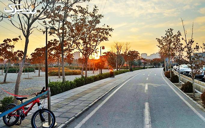 دوچرخه سواری در پیست دوچرخه سواری