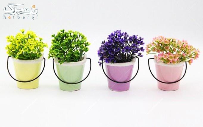 گلدان سرامیکی 4 عددی از تامین کالای نت برگ